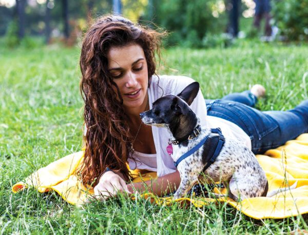 How to Become a Dog Foster