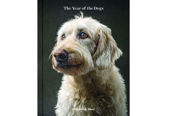 Vincent J. Musi's beautiful book, Year of the Dog, includes photos and narratives about each dog, from Chronicle Books; $29.95