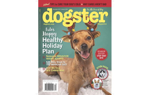 Check out the December 2019/January 2020 issue of Dogster magazine for dog holiday and weight loss tips.