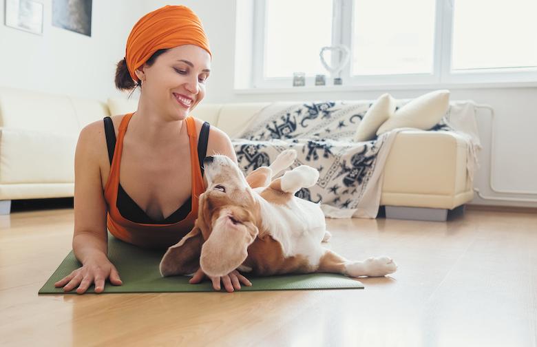 your dog's zen