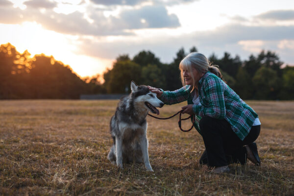 Are you thinking about becoming a professional pet sitter?  This week celebrates this great craft.